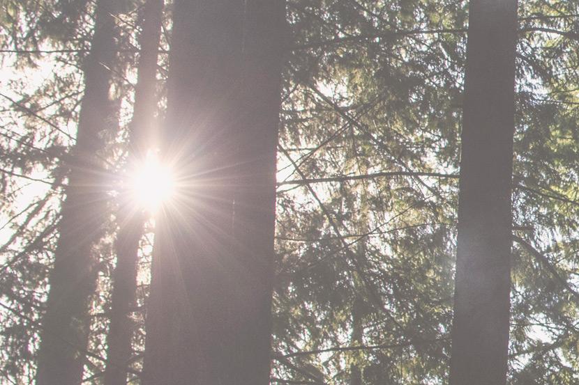 Is Artificial Light Better Than Natural Light